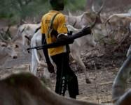 Nigeria, dal 2015 6mila cristiani uccisi dai pastori Fulani!